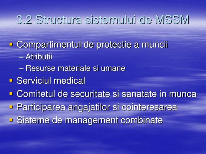 3.2 Structura sistemului de MSSM