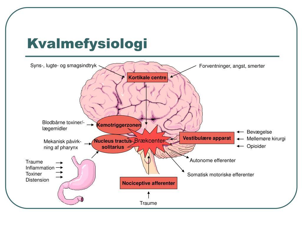 Kvalmefysiologi