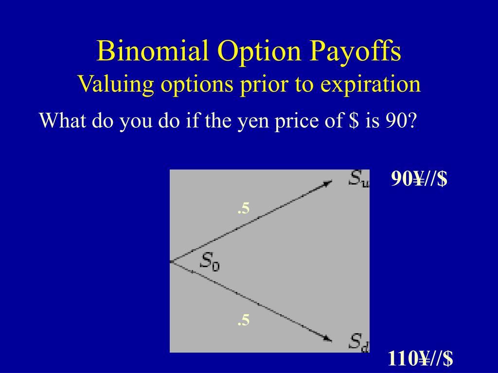 Binomial Option Payoffs