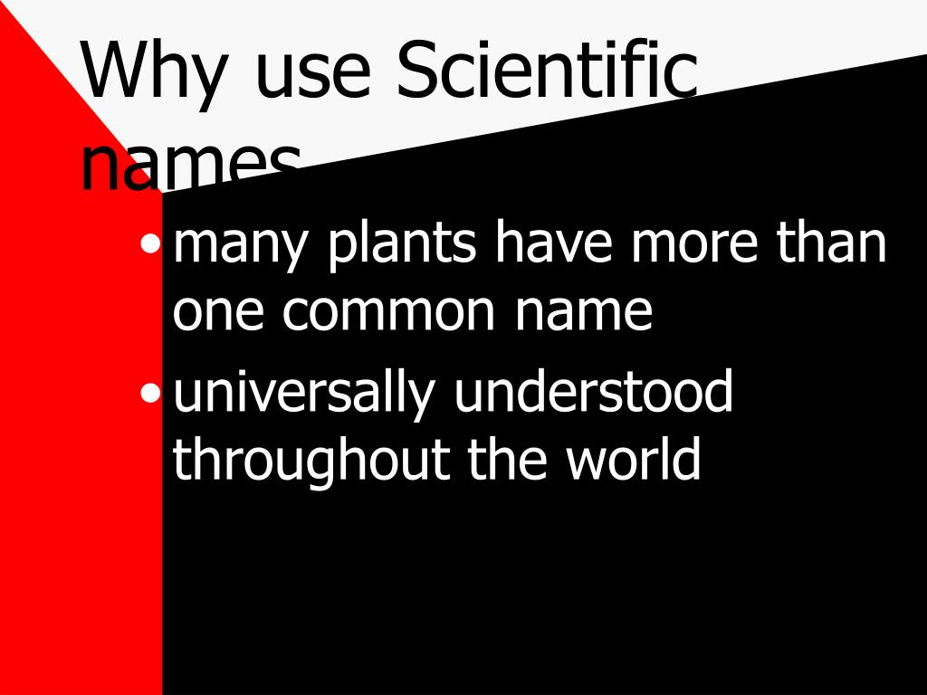 Why use Scientific names