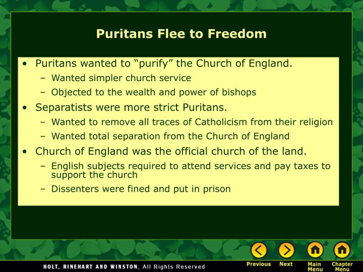"Puritans wanted to ""purify"" the Church of England."