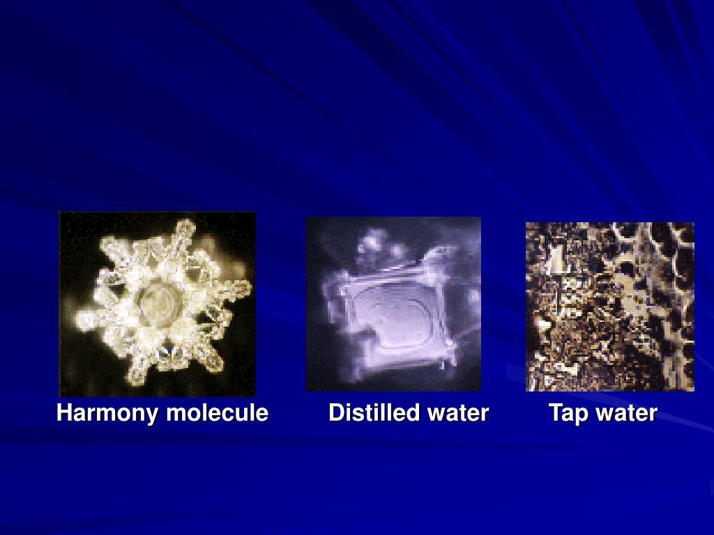 Harmony molecule         Distilled water         Tap water
