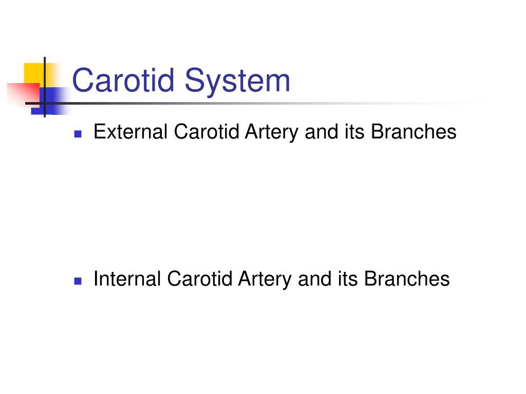 Carotid System