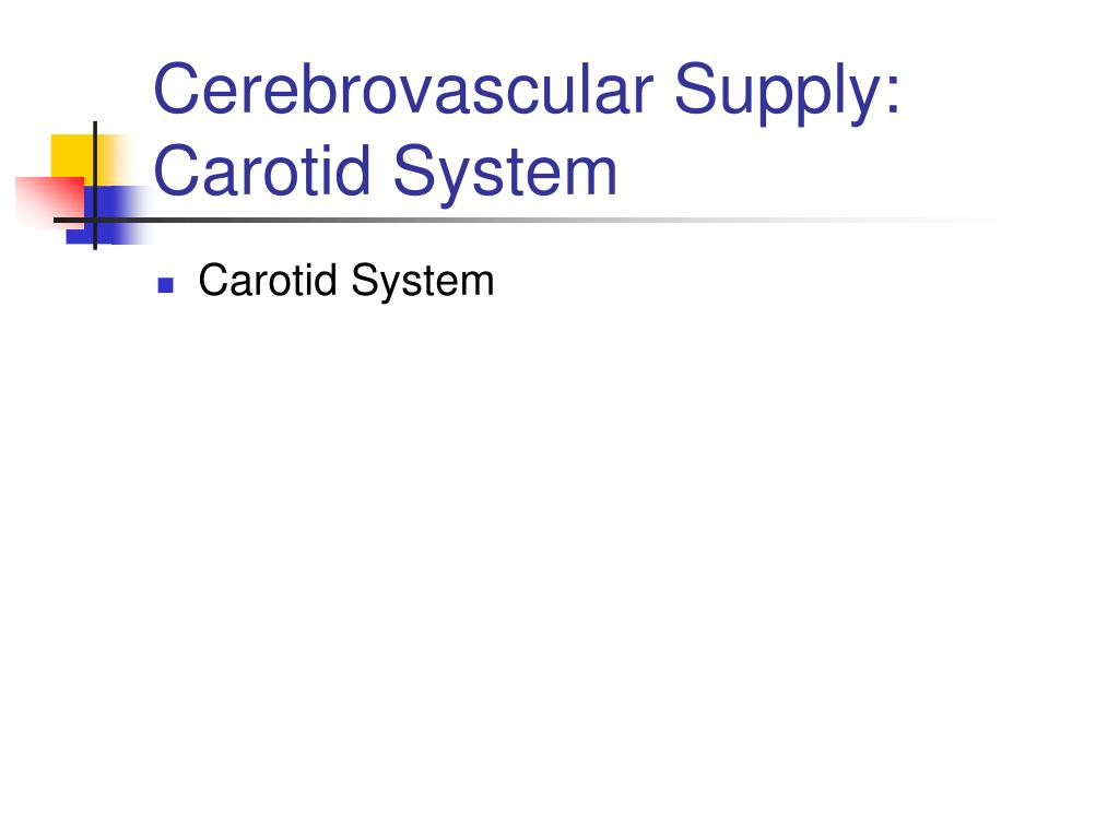 Cerebrovascular Supply:  Carotid System