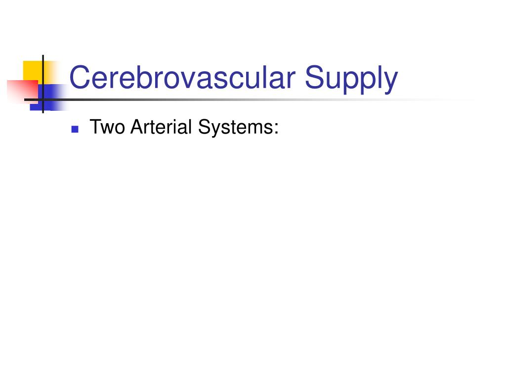 Cerebrovascular Supply