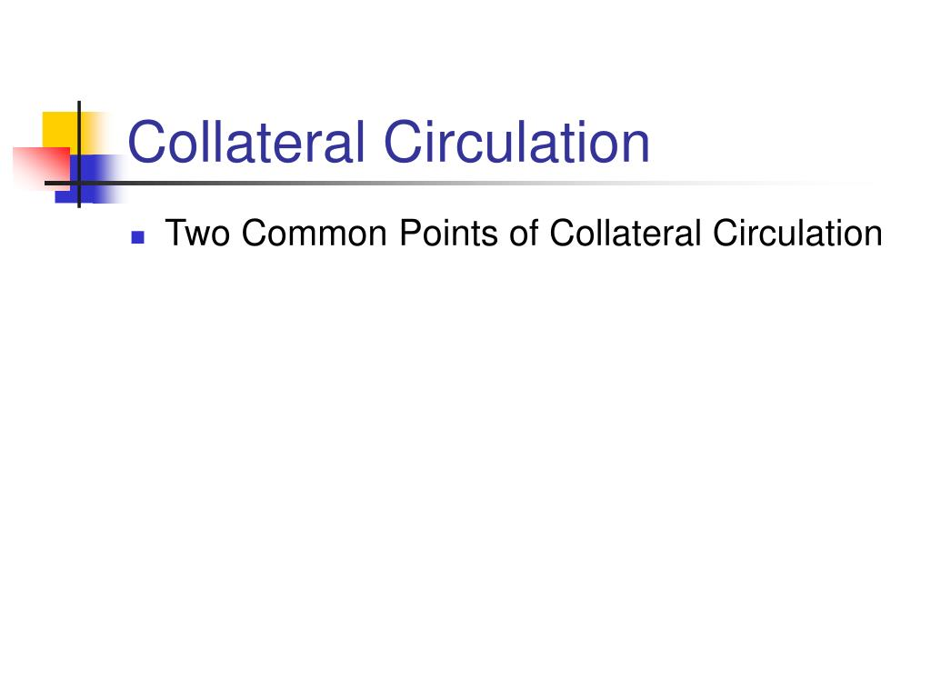 Collateral Circulation
