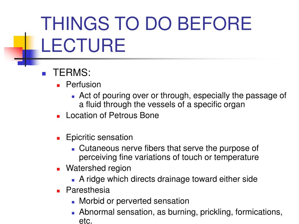 THINGS TO DO BEFORE LECTURE