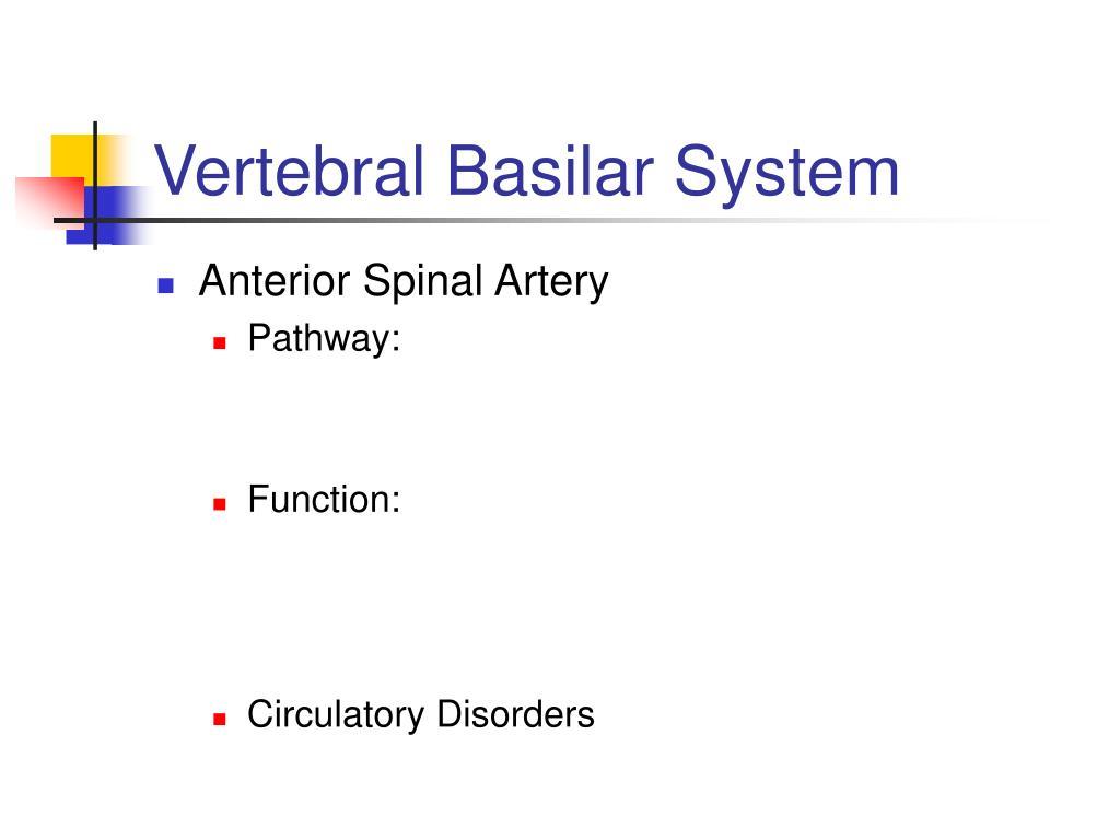 Vertebral Basilar System