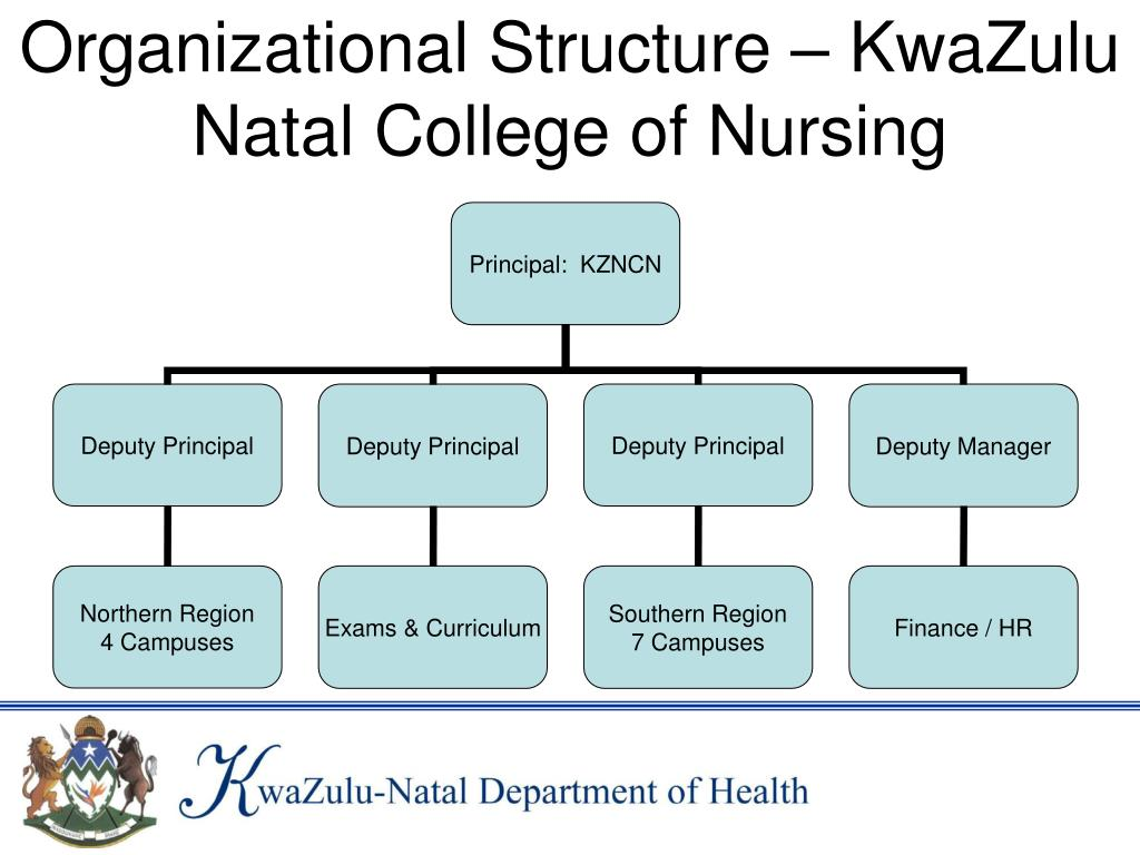 Organizational Structure – KwaZulu Natal College of Nursing