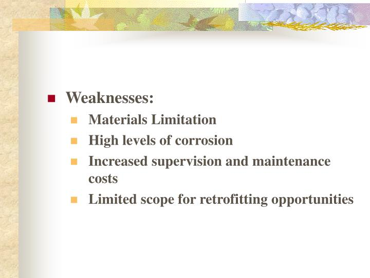 Weaknesses: