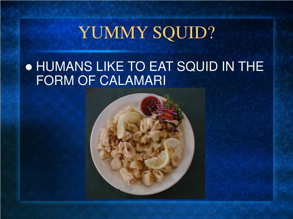 YUMMY SQUID?