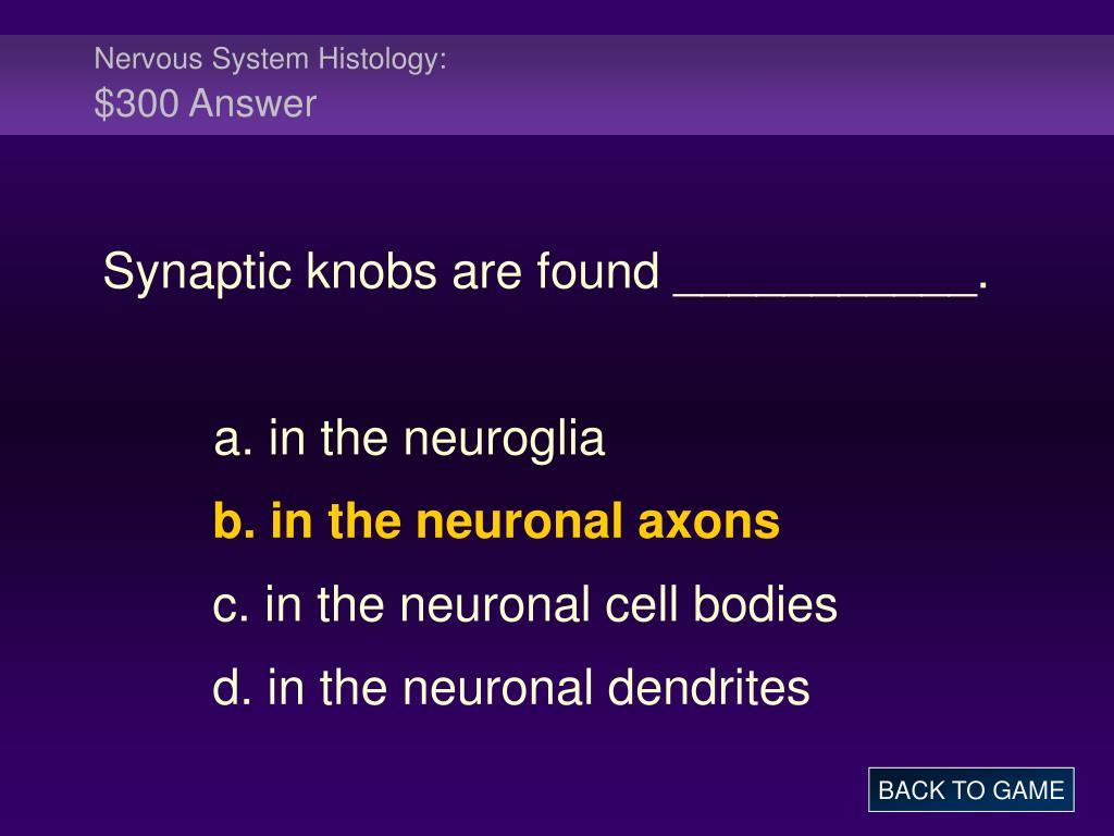 Nervous System Histology: