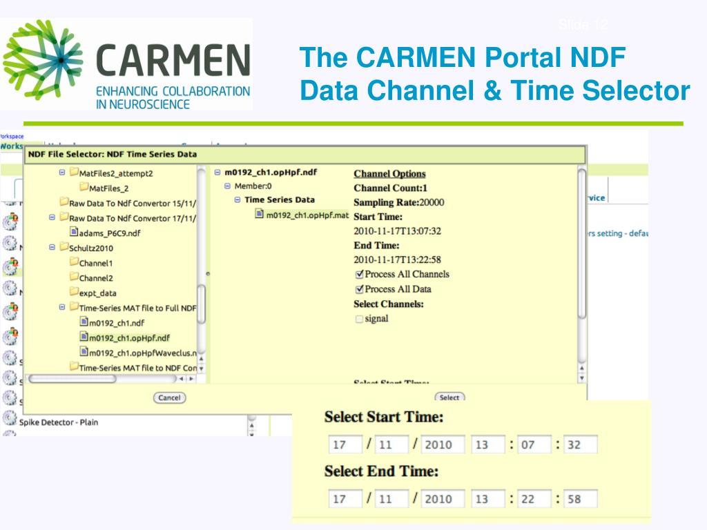 The CARMEN Portal NDF