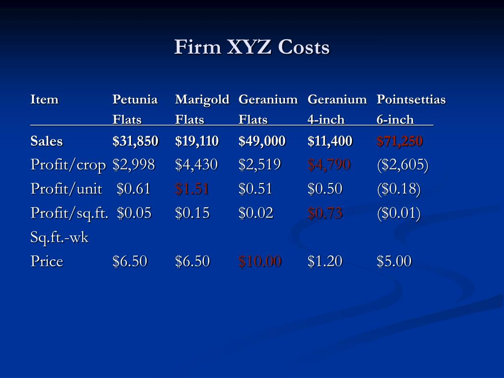 Firm XYZ Costs