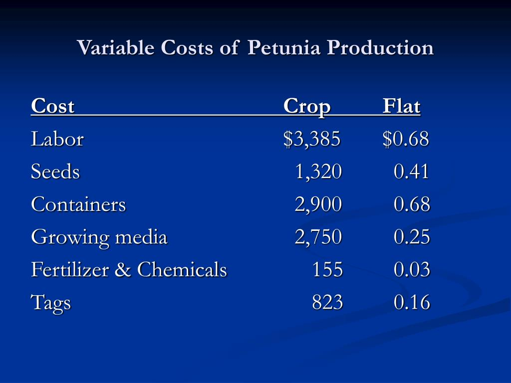 Variable Costs of Petunia Production