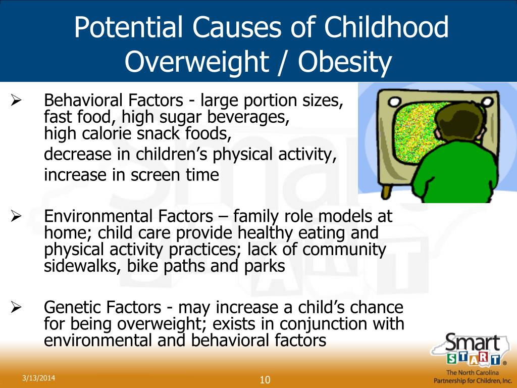Potential Causes of Childhood Overweight / Obesity