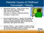 potential causes of childhood overweight obesity