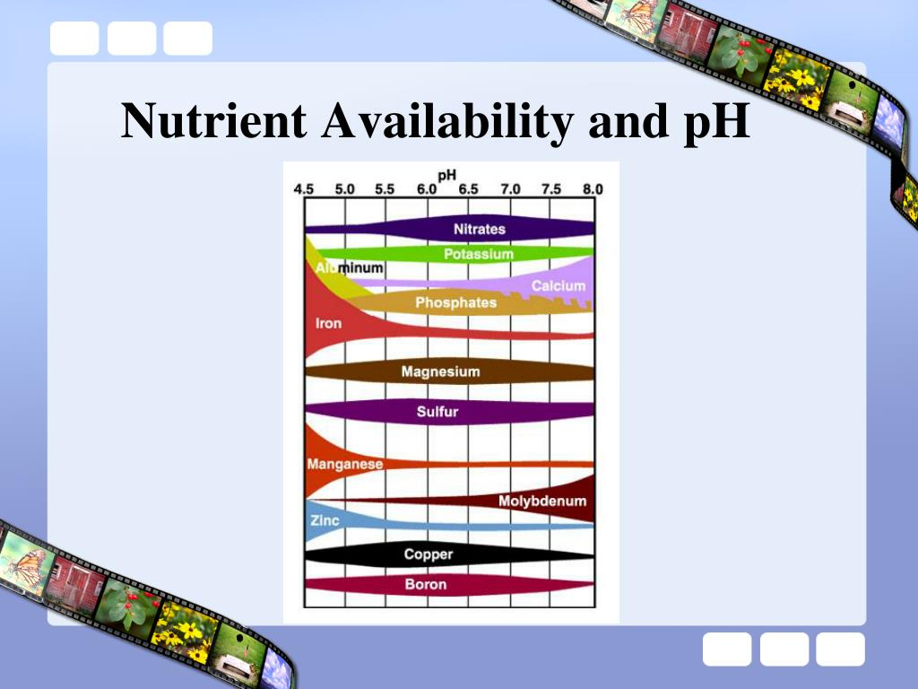 Nutrient Availability and pH