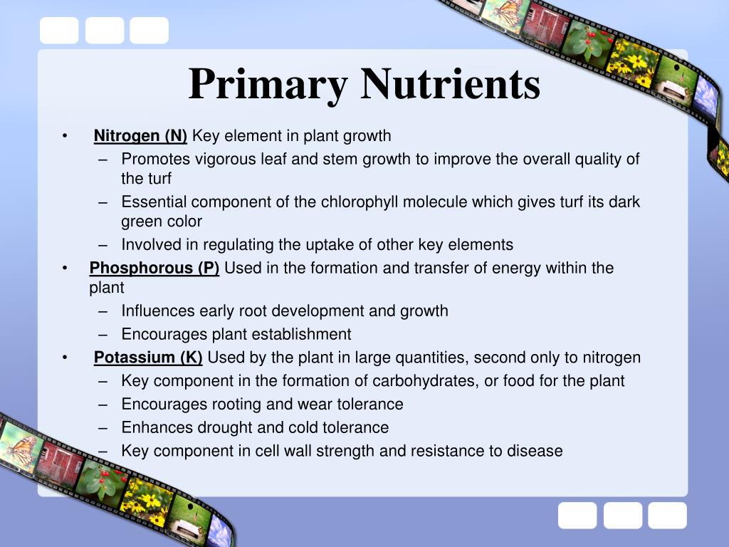 Primary Nutrients