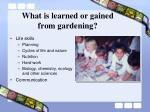 what is learned or gained from gardening
