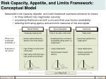 risk capacity appetite and limits framework conceptual model