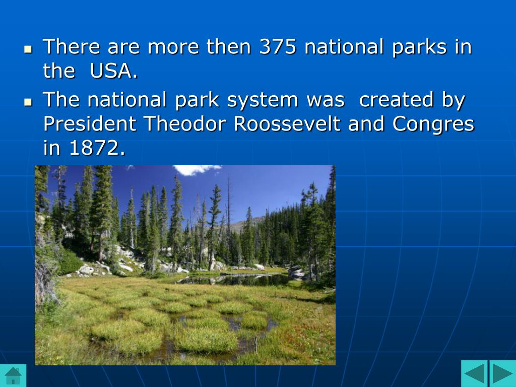 There are more then 375 national parks in the  USA.