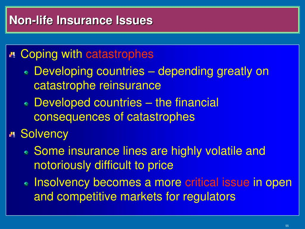 Non-life Insurance Issues