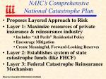 naic s comprehensive national catastrophe plan