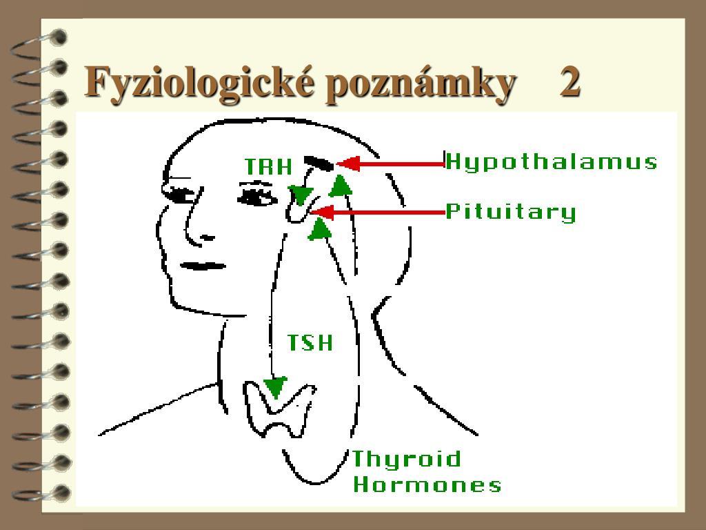 Fyziologické poznámky    2