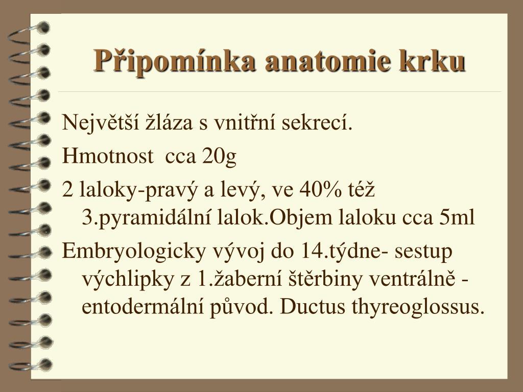 Připomínka anatomie krku