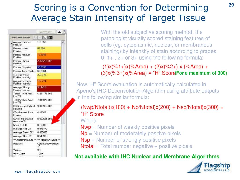 Scoring is a Convention for Determining Average Stain Intensity of Target Tissue