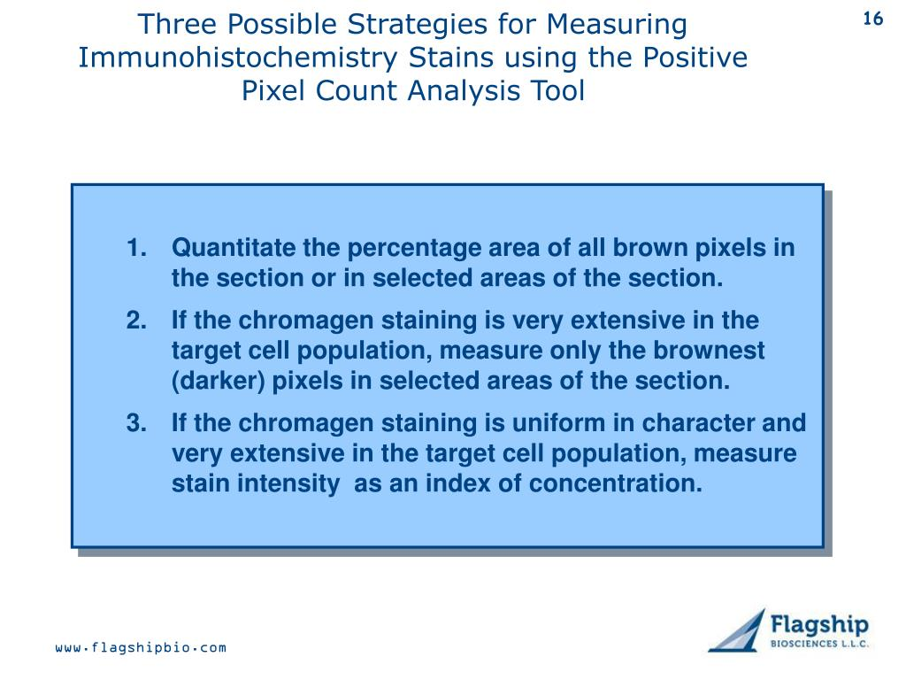 Three Possible Strategies for Measuring Immunohistochemistry Stains using the Positive Pixel Count Analysis Tool