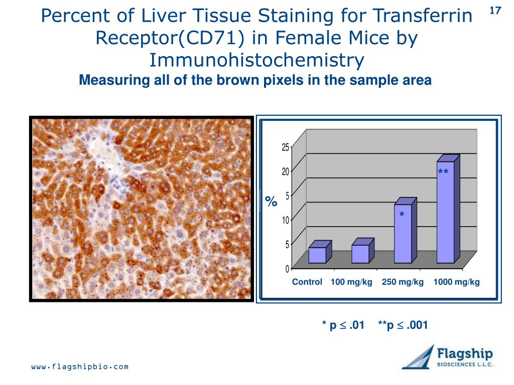 Percent of Liver Tissue Staining for Transferrin Receptor(CD71) in Female Mice by Immunohistochemistry