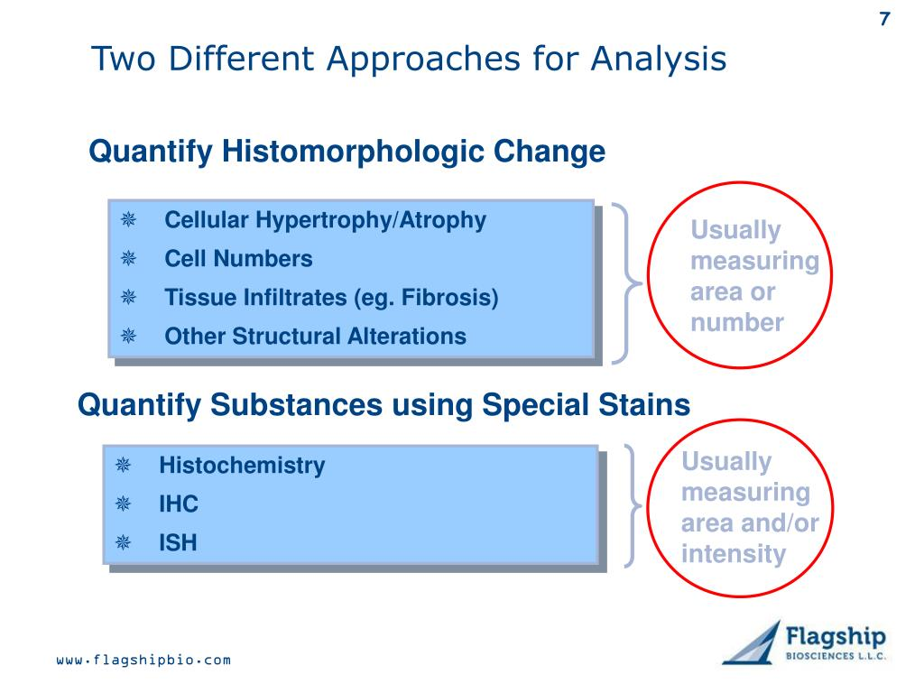 Two Different Approaches for Analysis