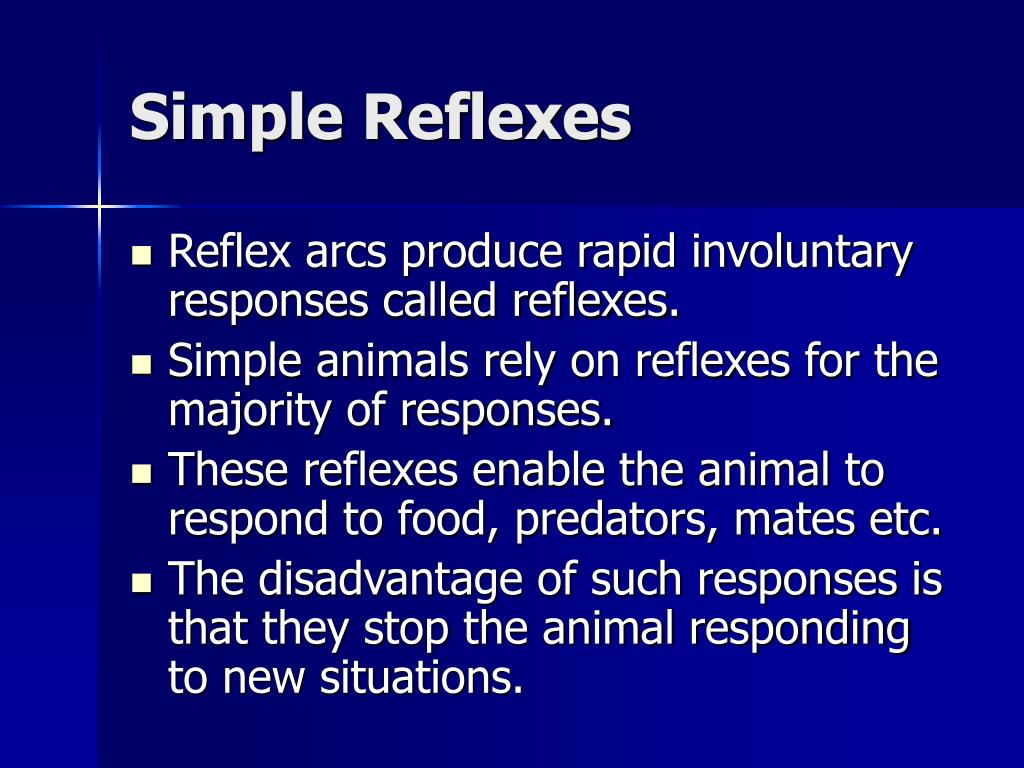 Simple Reflexes