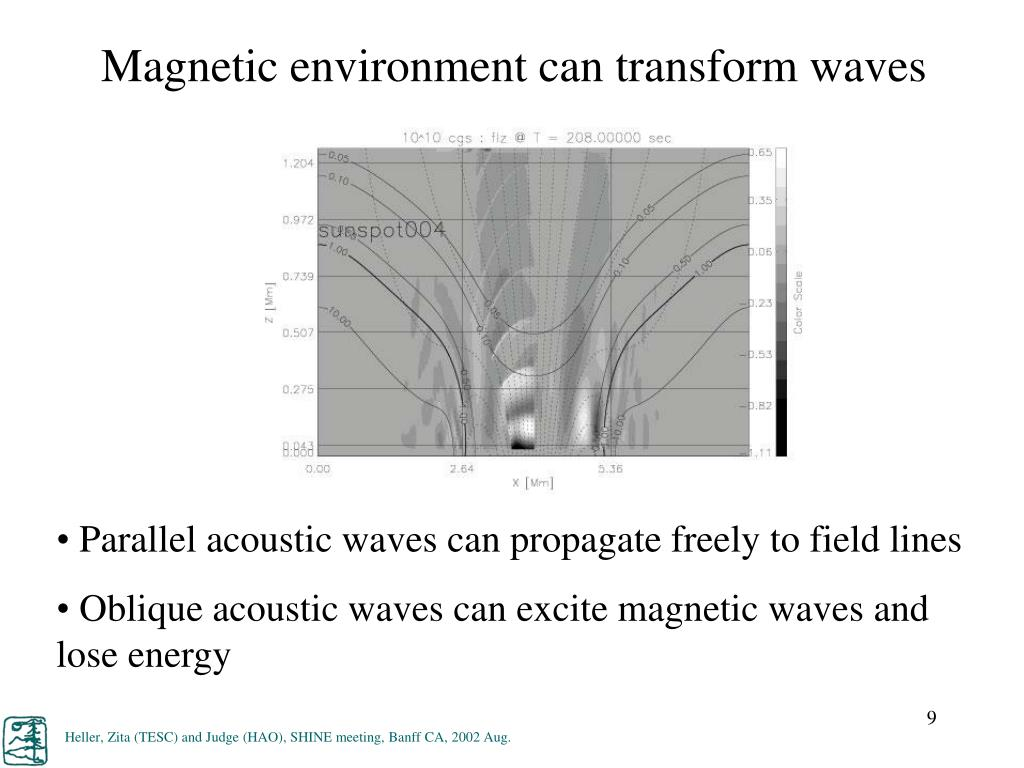 Magnetic environment can transform waves