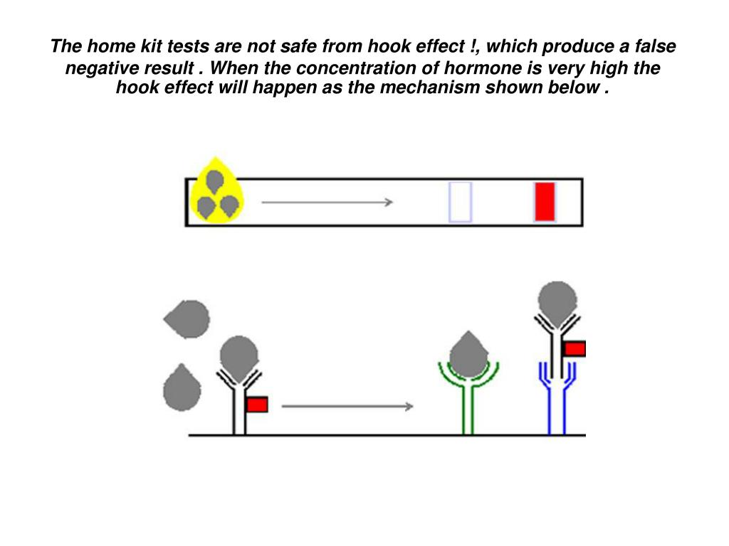 The home kit tests are not safe from hook effect !, which produce a false negative result . When the concentration of hormone is very high the hook effect will happen as the mechanism shown below .
