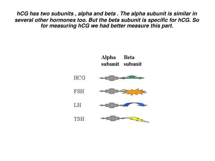 HCG has two subunits , alpha and beta . The alpha subunit is similar in several other hormones too. ...