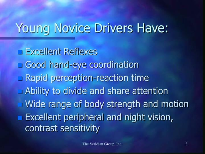 Young novice drivers have