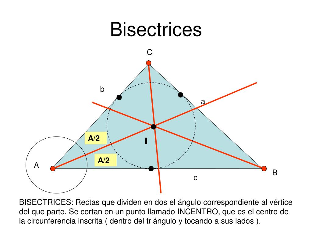 Bisectrices