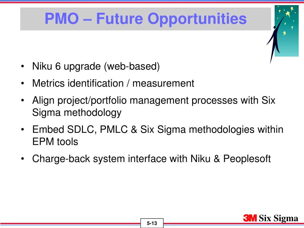 PMO – Future Opportunities