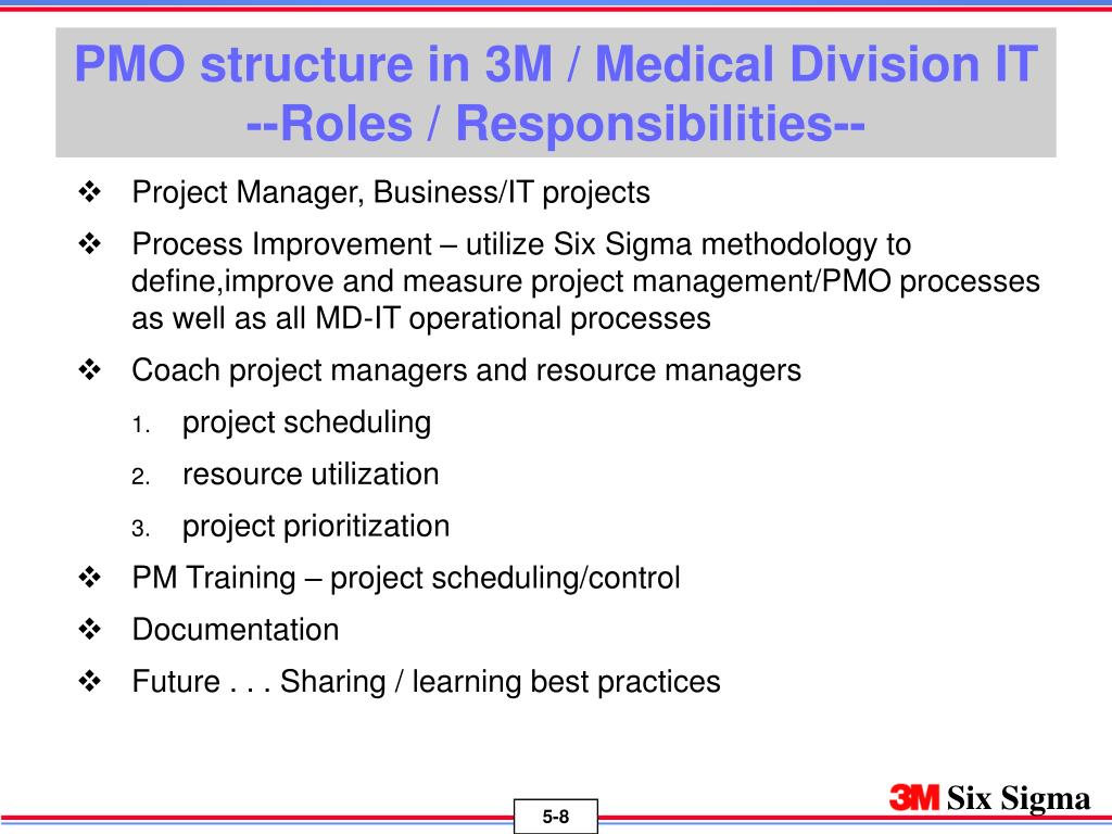 PMO structure in 3M / Medical Division IT