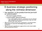 e business strategic positioning along the richness dimension