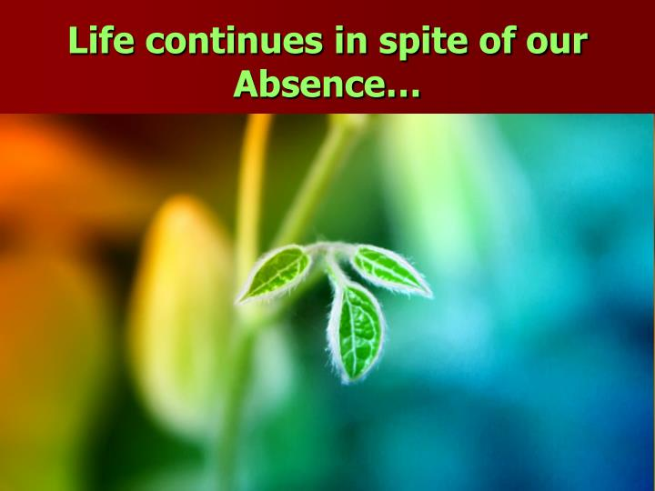 Life continues in spite of our Absence…