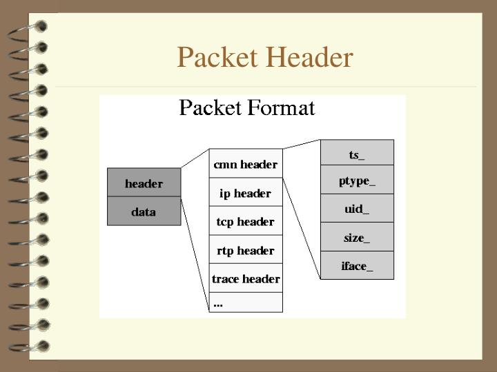 Packet Header