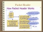 packet header1