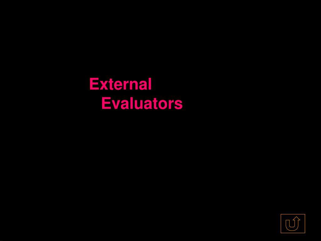 External Evaluators