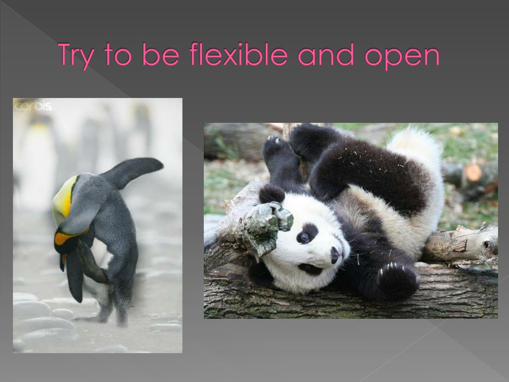 Try to be flexible and open