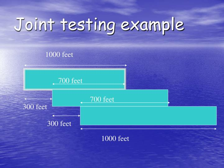 Joint testing example