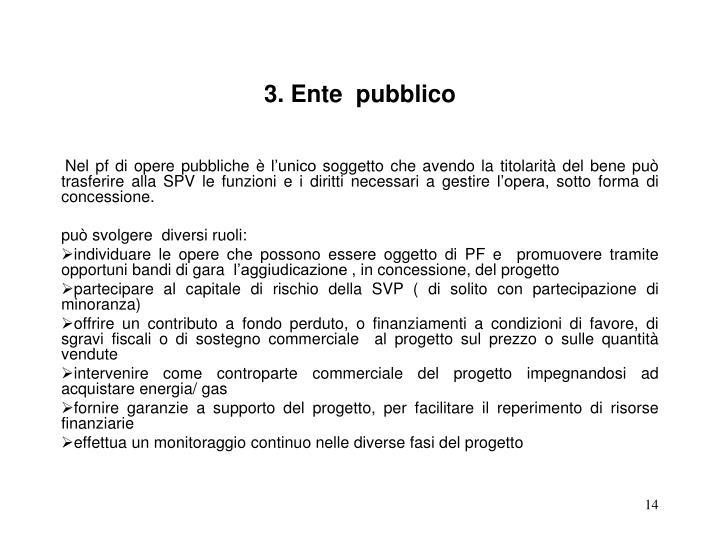 3. Ente  pubblico